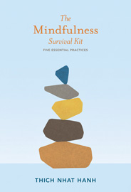 mindfullness_book gift ideas for meetings