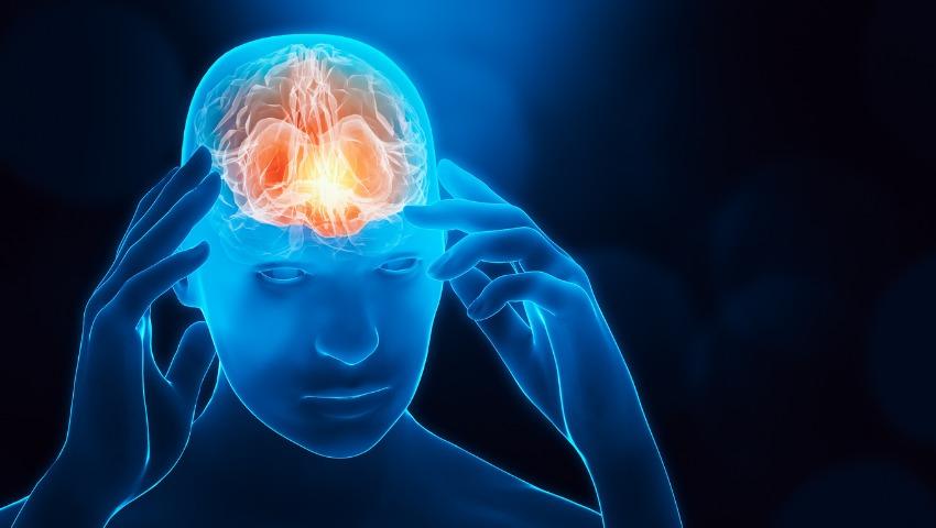 neuroscience secrets