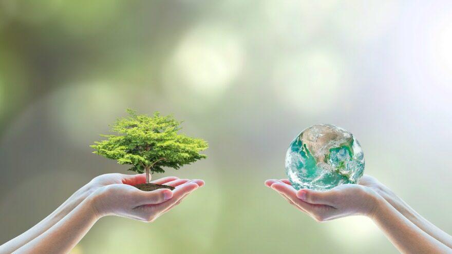 healthier world